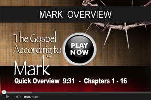 Mark overview video B