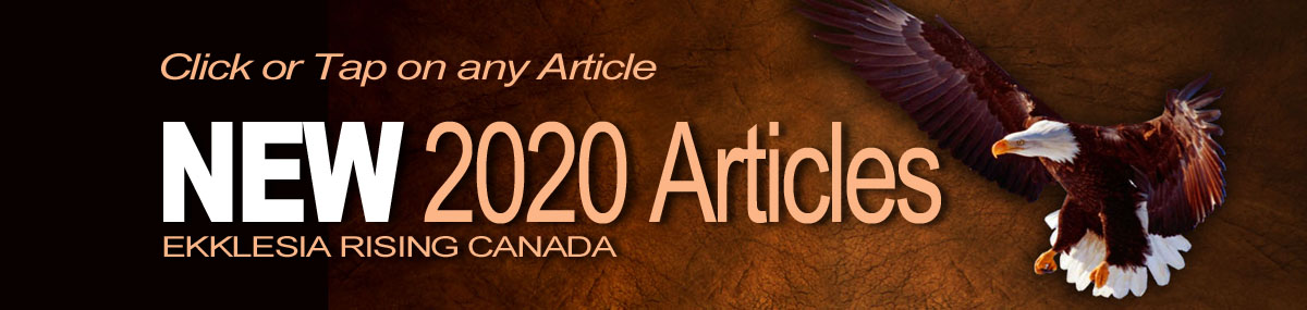 New 2020 Articles